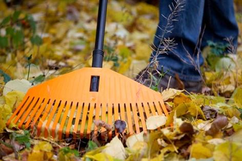 прибирання листя
